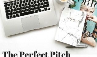 The Perfect Pitch-5